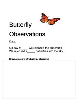 Monarch Butterfly Observation