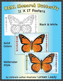 Monarch Butterfly Posters