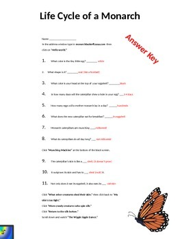Monarch Butterfly Web Quest (Editable)