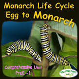 Monarch Life Cycle - Egg to Monarch