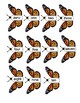 Monarch Butterfly Math