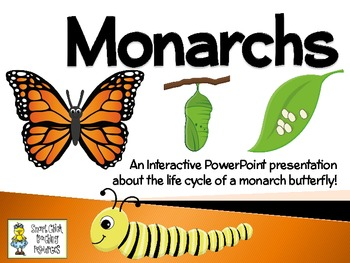 Monarchs ~ An Interactive PowerPoint Presentation of their Life Cycle