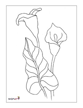 Calla Lily Drawing Project By Monart Online Store Tpt