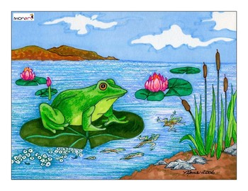 Monart Drawing Project: Frog's Life Cycle