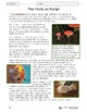 Monera, Protist & Fungi Kingdoms Lesson Plan Grade 6