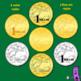 Money: Australian Coins Currency Clip Art Set