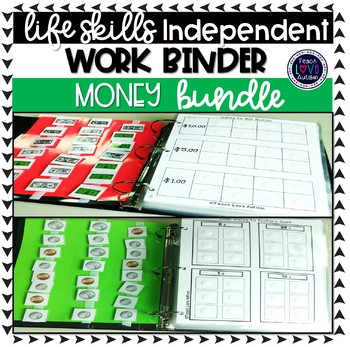 Money Independent Work Task Binder