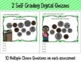 Money Self-Grading Digital Assessments: Counting Combinations of Coins