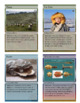 Mongolian Civilization - Trading Card Game