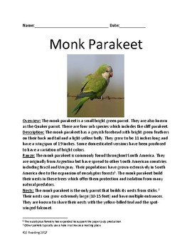 Monk Parakeet- informational article lesson facts with review questions