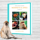 Monkey And Apes Montessori 3 part cards and activities
