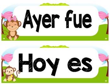 Monkey Bilingual Decorative Bundle