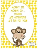 Monkey Vowels and Consonants