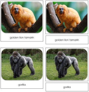 Monkey and Ape Safari Toob Cards - Montessori