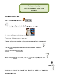 Monocots And Dicots Worksheets & Teaching Resources | TpT