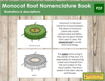 Monocot Root Nomenclature Book