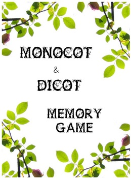 Monocot and Dicot Memory Game