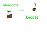 Monocots and Dicots for Smartboard