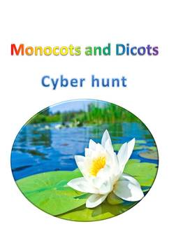 Monocots and dicots cyber hunt