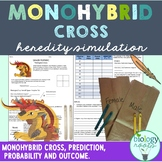 Monohybrid Cross Activity- Heredity Simulation