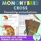 Genetics Monohybrid Cross Activity