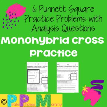 Monohybrid Cross Punnett Square Practice - Pod Color