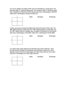 Monohybrid Cross Practice P... by Goby's Lessons ...