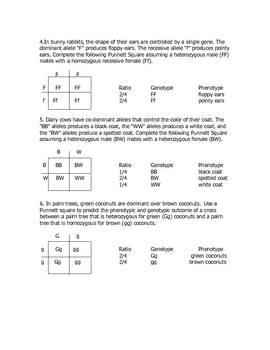 Monohybrid Cross Practice Problems by Goby's Lessons | TpT