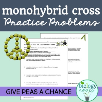 Freebie Monohybrid Cross Practice Problems Give Peas A Chance Tpt