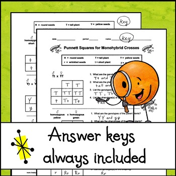 Monohybrid Crosses Worksheet Answers - Nidecmege