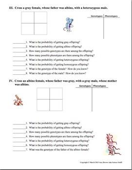 Monohybrid Mice!   (Monohybrid Genetics Problems)
