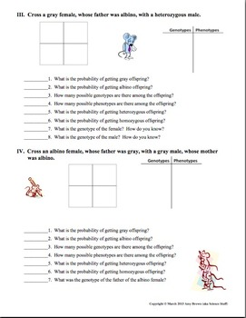 Punnett Squares by Amy Brown Science | Teachers Pay Teachers