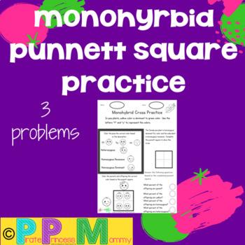 Monohybrid Punnett Square Practice