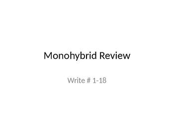 Monohybrid Review Presentation