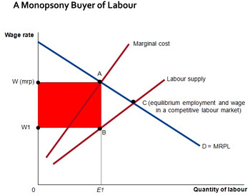 Monopsony (Labour Markets) - Quality PPTs for a difficult Economics topic