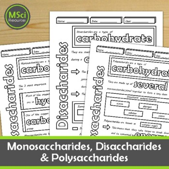 Monosaccharides, Disaccharides, Polysaccharides Biology, Chemistry Doodle Notes