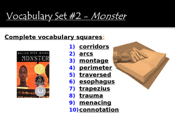 Monster by Walter Dean Myers - Vocabulary Activity (SET #2)