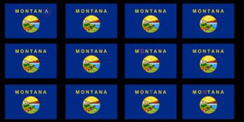 Montana - Digital Breakout! (Escape Room, Early Finishers, Brain Break)
