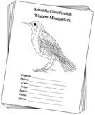 Montana State Bird Notebooking Set (Western Meadowlark)