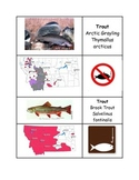 Montana Trout Classification Cards