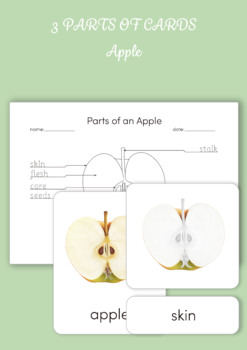 Montessori 3 Part Card - Parts of an Apple