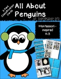 Montessori 3 Part Cards: All About Penguins | English K-3 Pack