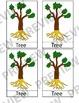 Montessori 3 Part Cards (BUNDLE Parts of a Flower, Leaf, Tree)