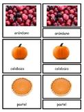 Montessori 3 Part Cards Dia de Gracia