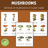Mushrooms Montessori 3 Part Cards