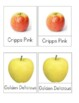 Montessori 3-Part Cards - Types of Apples