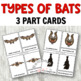 Montessori 3 Part Cards: Types of  Bats