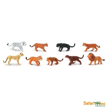 Montessori 3 Part Cards Types of Big CATS