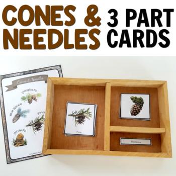 Montessori 3 Part Cards: Types of Cones and Needles