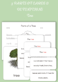 Montessori 3 Part Cards and Definition Cards - Parts of the Tree